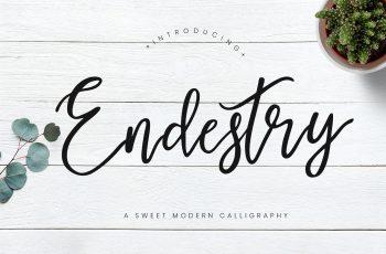 Endestry Modern Calligraphy